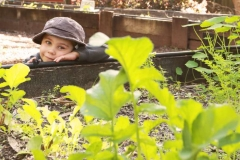 child watching the vegie garden grow