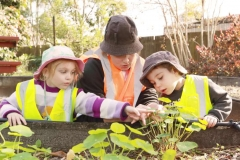 mountain creeks educators teaching children about gardens